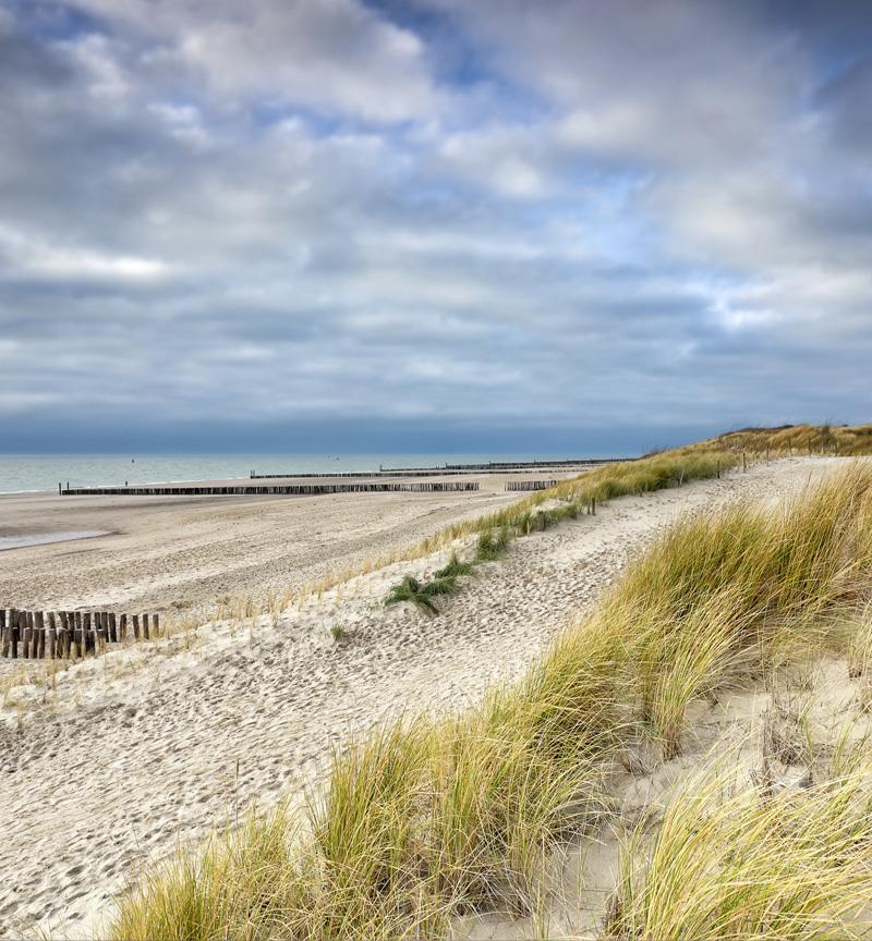 Ostseelandschaft in Mecklenburg-Vorpommern genießen
